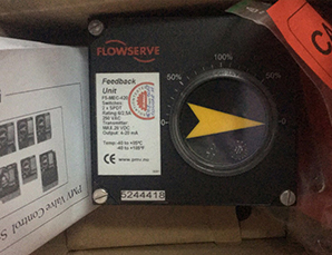 美国Flowserve